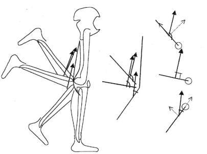 knee-angle